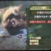 【NH3G】G級ドボルと緊急クエスト!