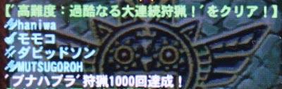 ブナハブラ1000