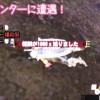 【MH4】遂に爆殺厨と遭遇! 私が出会った爆殺厨リスト(8/21☆えいいち☆さんとの後日談追記)