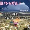 【MH4】オウガorオウガ亜種&ラー祭り! ラー狩猟数がテオ様討伐数を抜いてしまいましたw