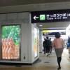 【MH4】北海道に戻ってきました♪ 盾斧シャガル修行は4スタン25分針!