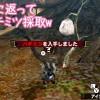 【MH4】KEISUKEさんとの狩り収め! 4Gで再会いたしましょう♪
