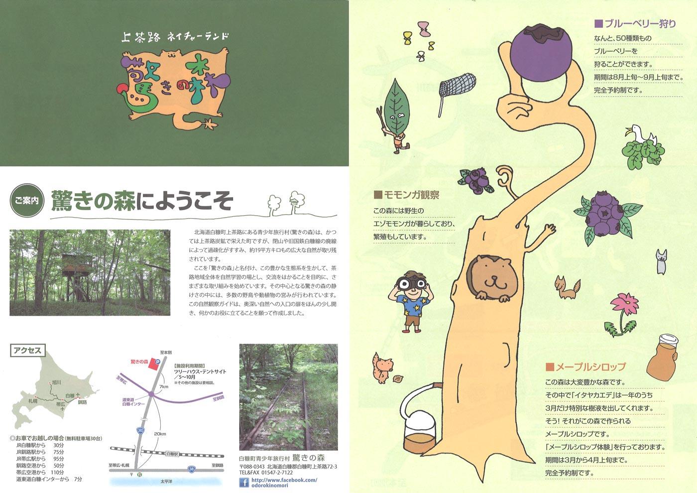 驚きの森パンフ1