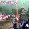 【MH4G】北海道LOVEハンターの皆さまとマッタリ狩り♪ 一時的にネットに繋がらなくなり焦りました><