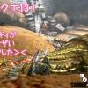 【MH4G】お久しぶりのアースさん、RainySoulさん! 改造疑惑クエに遭遇っ;;