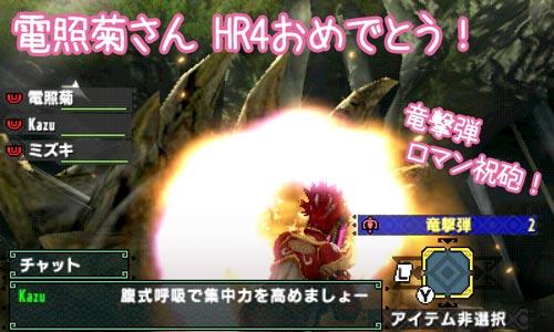 電照菊さんHR4おめでとう
