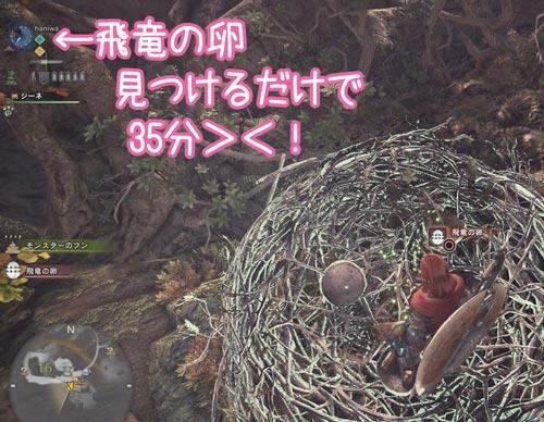 飛竜の卵見つけるだけで35分
