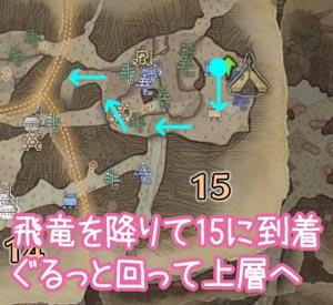 飛竜の卵運搬ルート2(古代樹の森)